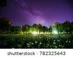 green trees woods in park under ...   Shutterstock . vector #782325643