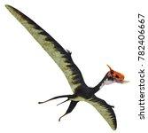dsungaripterus reptile wings...   Shutterstock . vector #782406667