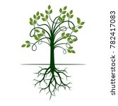 green tree with roots. vector... | Shutterstock .eps vector #782417083
