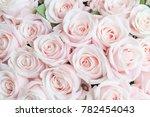 pink rose for background  ...   Shutterstock . vector #782454043