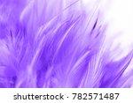 purple chicken feathers in soft ... | Shutterstock . vector #782571487