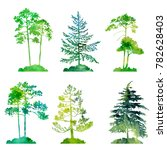 watercolor set of conifer trees ... | Shutterstock . vector #782628403