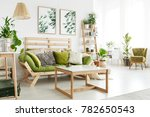 wooden green settee with... | Shutterstock . vector #782650543