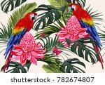 beautiful seamless vector... | Shutterstock .eps vector #782674807