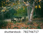 empty wooden picnic table and...   Shutterstock . vector #782746717
