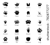 different footprints of birds... | Shutterstock . vector #782877277