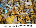 chanterelle mushroom for sale... | Shutterstock . vector #782890717