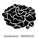 flower rose  black and white.... | Shutterstock .eps vector #782900137