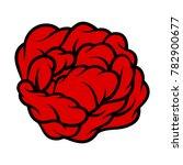 red rose isolated on white... | Shutterstock .eps vector #782900677