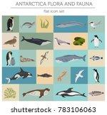 antarctic  antarctica flora and ... | Shutterstock .eps vector #783106063