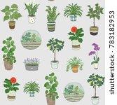 home indoor plants vector hand...   Shutterstock .eps vector #783182953