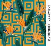 bird of paradise tropical... | Shutterstock .eps vector #783294907