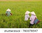 unrecognizable vietnamese women ... | Shutterstock . vector #783378547