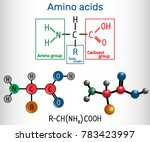 general formula of amino acids  ... | Shutterstock .eps vector #783423997