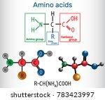 general formula of amino acids  ... | Shutterstock .eps vector #783423997