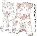 siberian husky dog puppy smiley ... | Shutterstock .eps vector #783840313