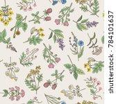 seamless pattern of various... | Shutterstock . vector #784101637