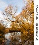 Autumn Winter Lake River Scene...