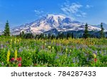 Wildflowers At Mount Rainier