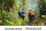 hikers in rain forest jungle ... | Shutterstock . vector #784320103
