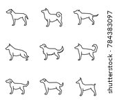 straight line icon set dog ... | Shutterstock .eps vector #784383097