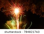firework. celebratory bright... | Shutterstock . vector #784821763
