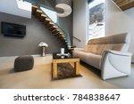 living room of luxury house... | Shutterstock . vector #784838647