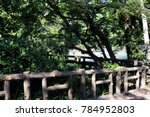 wooden bridge in the inokashira ...   Shutterstock . vector #784952803