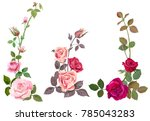 Collection Of Pink  Red Roses ...