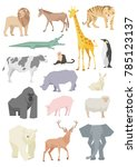 animal vector illustrations | Shutterstock .eps vector #785123137