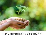 in the hands of trees growing...   Shutterstock . vector #785148847