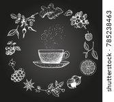 herbal tea vector illustration. ...   Shutterstock .eps vector #785238463
