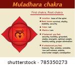 muladhara chakra infographic.... | Shutterstock . vector #785350273