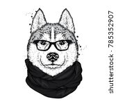 a beautiful husky with glasses