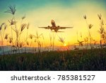 grass sky nature airport plane... | Shutterstock . vector #785381527