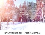 winter forest on a sunny day.... | Shutterstock . vector #785425963