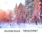 winter forest on a sunny day.... | Shutterstock . vector #785425987