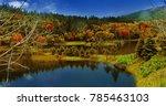 yunnan shangri la pudacuo... | Shutterstock . vector #785463103
