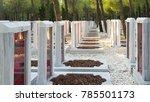 canakkale  turkey   august 04 ...   Shutterstock . vector #785501173