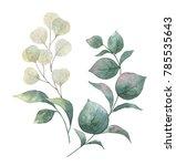 watercolor hand painted wreath... | Shutterstock . vector #785535643