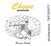vector background with cheese.... | Shutterstock .eps vector #785702977