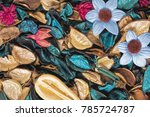 beautiful and colorful... | Shutterstock . vector #785724787