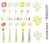 set of vector flowers and... | Shutterstock .eps vector #785822257