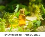 linden essential oil in a...   Shutterstock . vector #785901817