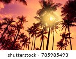 tropical palm trees silhouettes ... | Shutterstock . vector #785985493