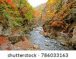 autumn season leaf in naruko... | Shutterstock . vector #786033163