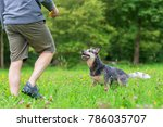 picture of a man who plays with ... | Shutterstock . vector #786035707