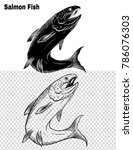 fish vector by hand drawing | Shutterstock .eps vector #786076303