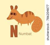 vector of cute english alphabet ... | Shutterstock .eps vector #786204877