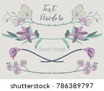 delicate colorful hand drawn... | Shutterstock .eps vector #786389797